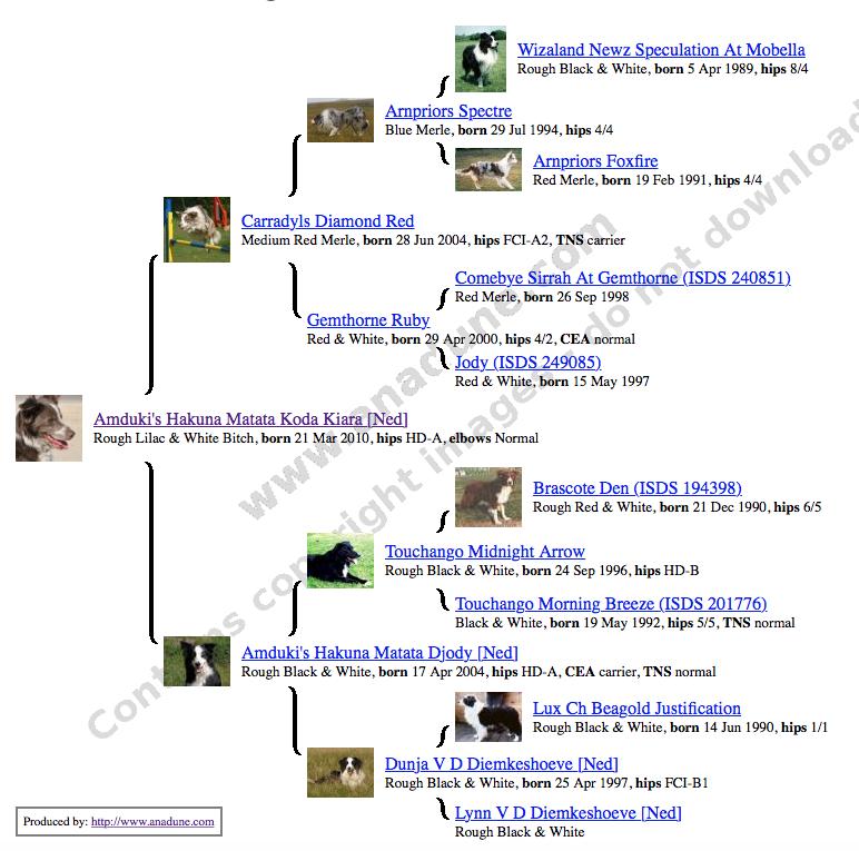 Schermafbeelding 2015-02-04 om 11.40.06